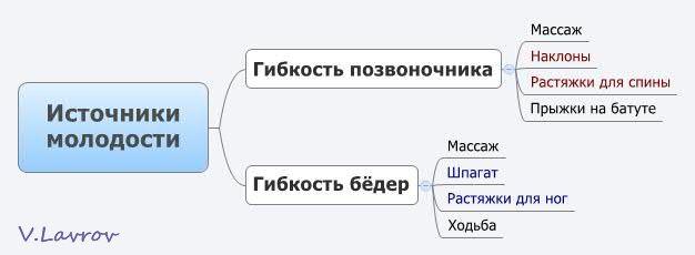 5954460_Istochniki_molodosti (626x230, 16Kb)