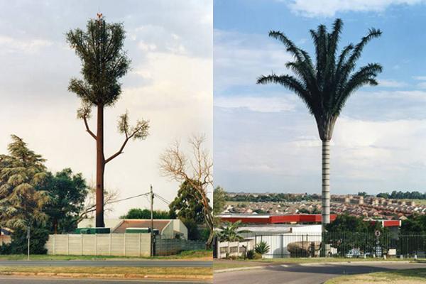 вышки-в-деревьях 1 (600x400, 249Kb)