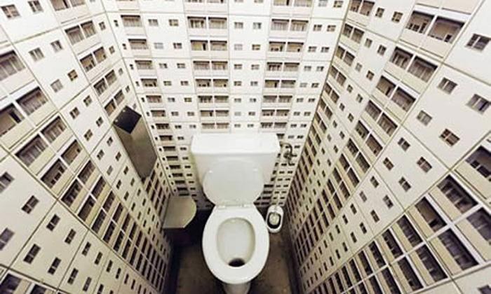 131179769_tualet7.jpg