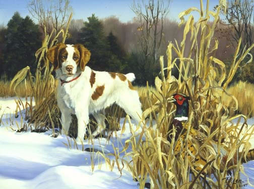 Brittany and Pheasant in Snow_jpg (504x376, 188Kb)