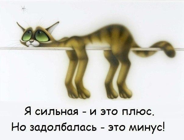 KHoCI1ZNYtg (604x459, 35Kb)