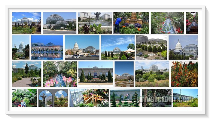 united-states-botanic-garden-washington-dc-1024x580 (700x396, 105Kb)