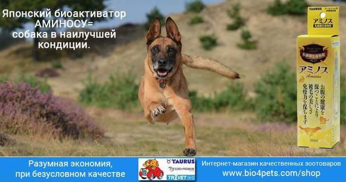 FB_IMG_1472416490036 (700x369, 37Kb)
