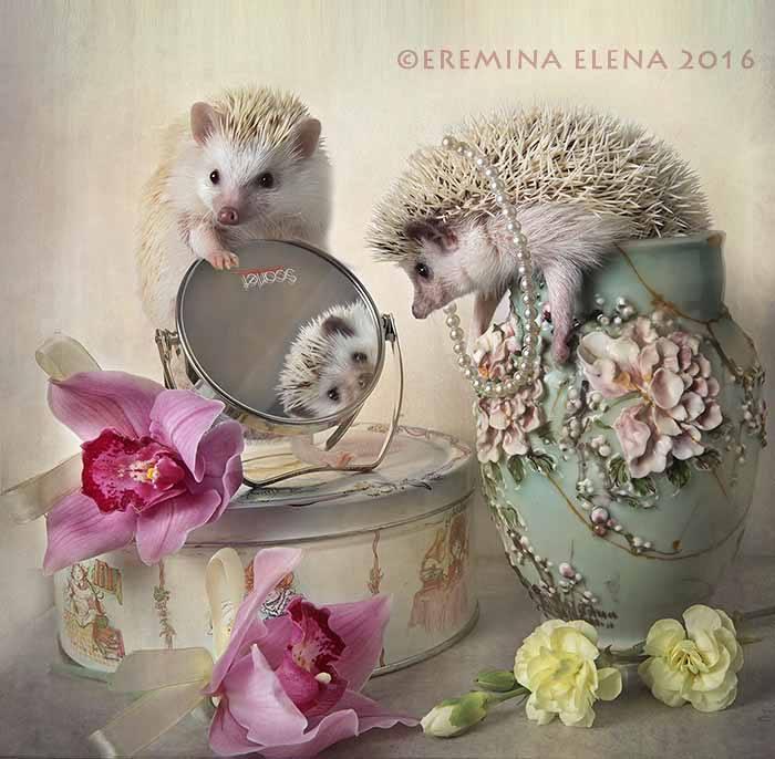 Elena Eremina1� (700x686, 283Kb)