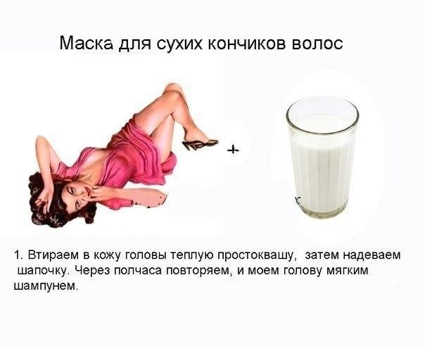 5463572_maska_dlya_syhih_volos (604x492, 34Kb)