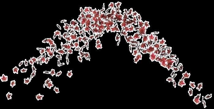 leaf (700x357, 165Kb)