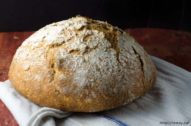 no-knead-sourdough-featured-image-horizontal-1-of-1-660x437 (660x437, 156Kb)