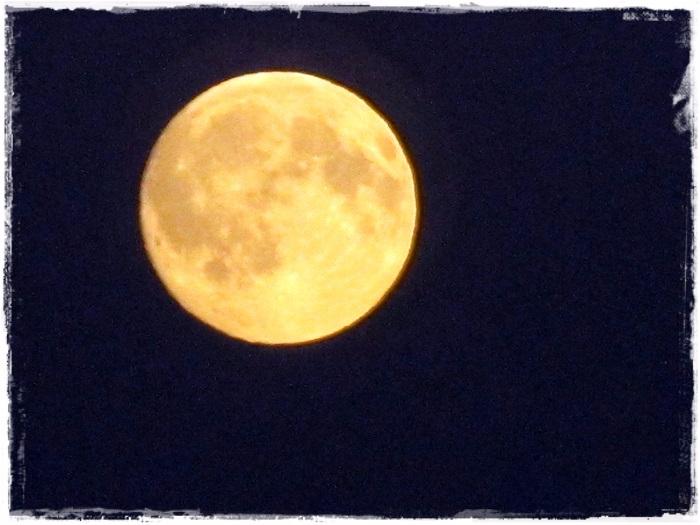 Луна август 2016IMG_3715-20160817 (700x525, 295Kb)