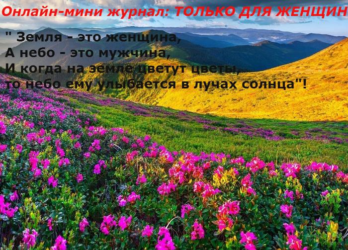 priroda_foto_13_03 (1) (700x503, 620Kb)