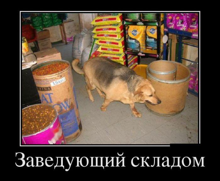 4809770_usob (700x576, 59Kb)