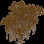 ������ jojo_autumn_forest_elementt_09 (700x687, 699Kb)