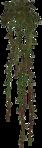 ������ jojo_autumn_forest_elementt_16 (187x661, 105Kb)