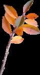 ������ jojo_autumn_forest_elementt_29 (247x459, 104Kb)