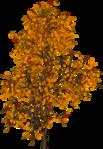 ������ jojo_autumn_forest_elementt_33 (414x600, 493Kb)