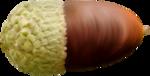 ������ jojo_autumn_forest_elementt_52 (250x127, 68Kb)