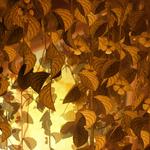 ������ jojo_autumn_forest_paper_09 (700x700, 598Kb)