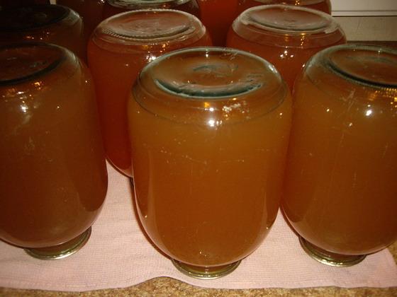 Как заготовить яблочный сок в домашних условиях - Meri30.ru