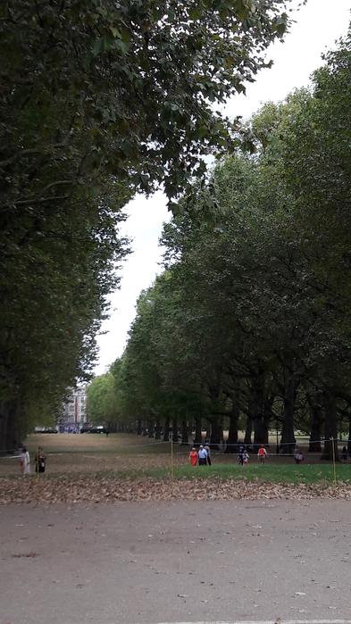 Картинки гайд парк осенью