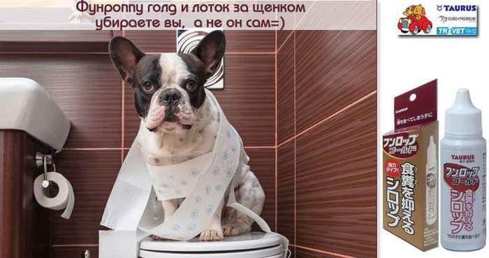 FB_IMG_1473540943325 (700x369, 38Kb)