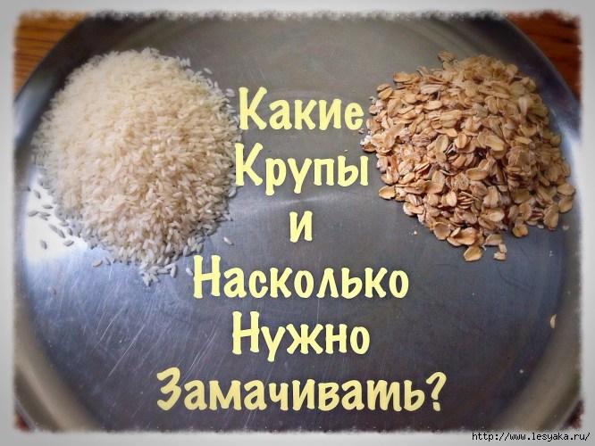 3925073_soaking_grains (666x500, 200Kb)