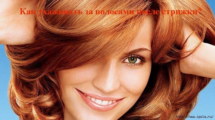 "alt=""Как ухаживать за волосами после стрижки?""/2835299_Kak_yhajivat_za_volosami_posle_strijki (700x393, 259Kb)"
