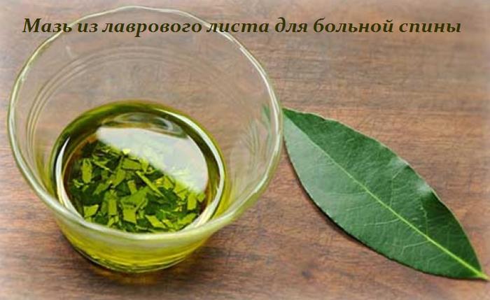 2749438_Maz_iz_lavrovogo_lista_dlya_bolnoi_spini (700x429, 406Kb)