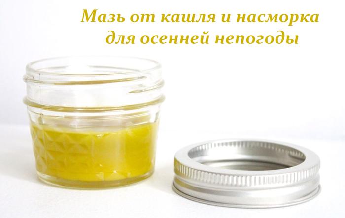 2749438_Maz_ot_kashlya_i_nasmorka_dlya_osennei_nepogodi (700x443, 203Kb)