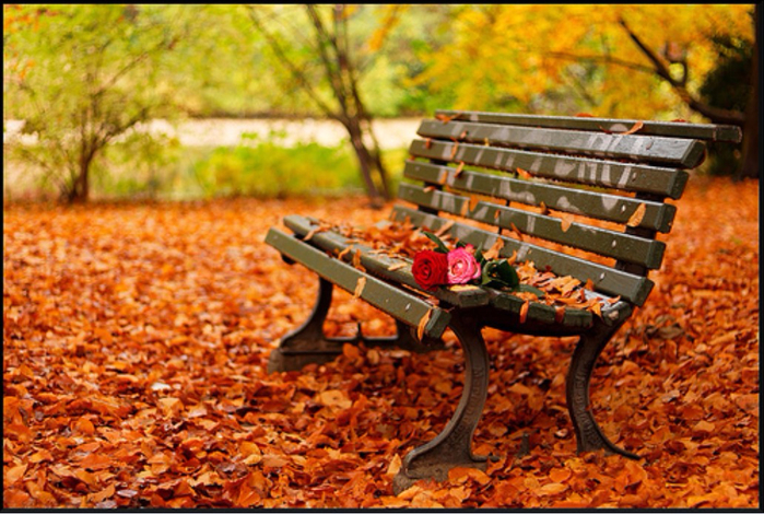 romantic-autumn (700x470, 475Kb)