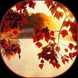 oie_png (15) (250x250, 163Kb)