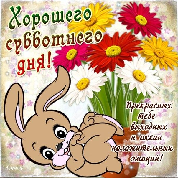 3470549_sybbo (604x604, 117Kb)