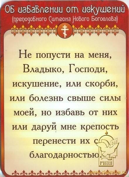 4417122_478564620_w640_h640_plenka_06 (440x604, 77Kb)