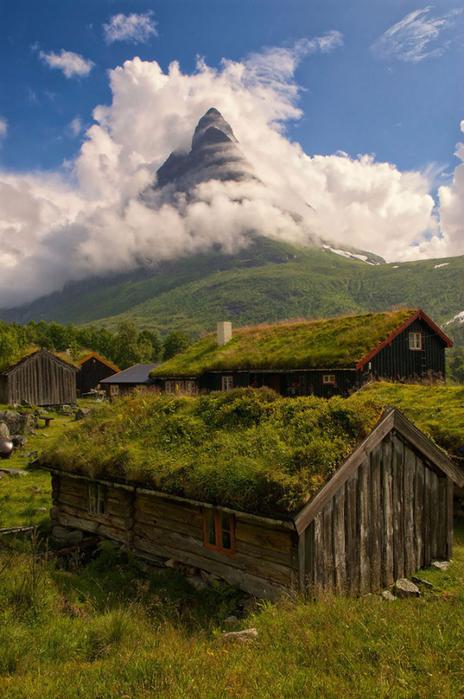 зеленые крыши в скандинавии фото 8 (464x700, 414Kb)