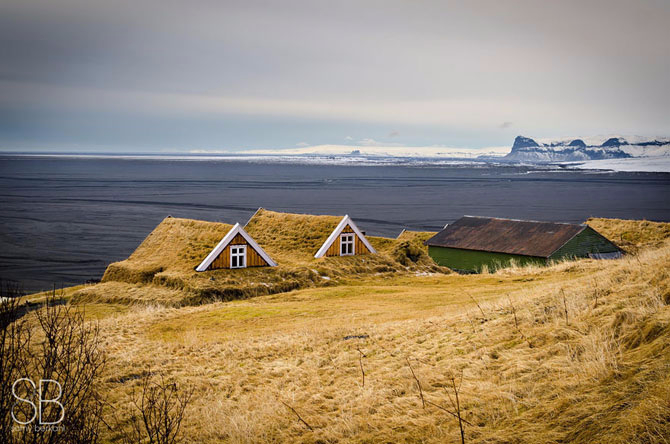 зеленые крыши в скандинавии фото 12 (670x444, 274Kb)