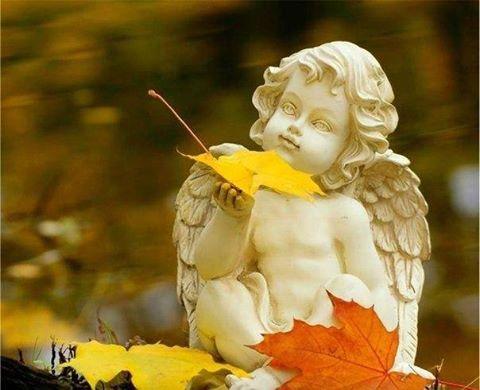 Ангел (480x390, 158Kb)