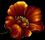 5155516_proxy_imgsmail_ru4 (150x136, 29Kb)
