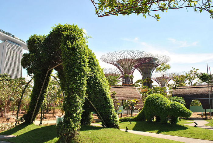 Gardens-By-The-Bay-Singapore_10 (700x470, 193Kb)