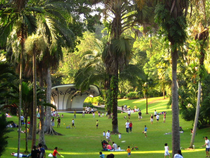 1Singapore_Botanic_Gardens_Palm_Valley (700x525, 326Kb)