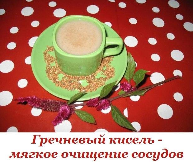 2749438_GREChNEVII_KISEL__MYaGKOE_OChIShENIE_SOSYDOV (620x520, 70Kb)