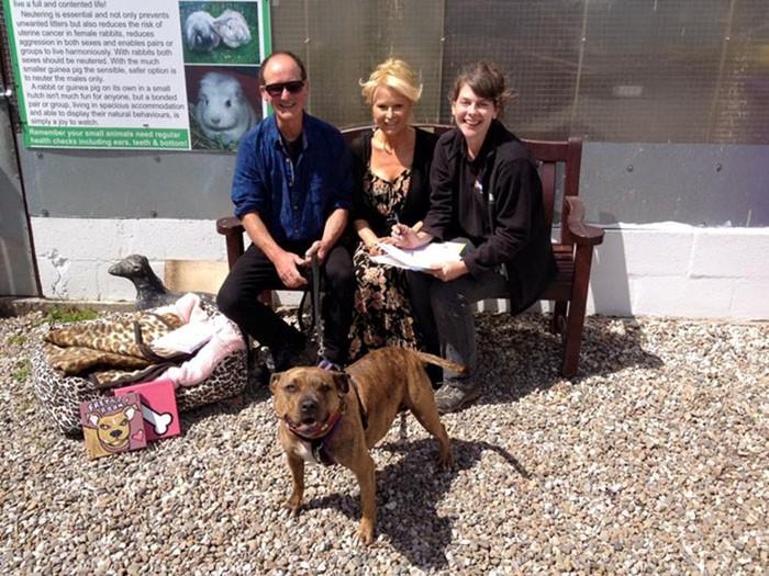 Как самая одинокая в мире собака получила роль в сиквеле фильма «Трансформеры»