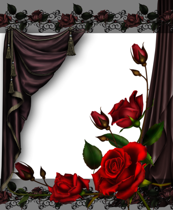 6032303_curtains_and_roses__by_collect_and_creatd82chu0 (577x700, 413Kb)