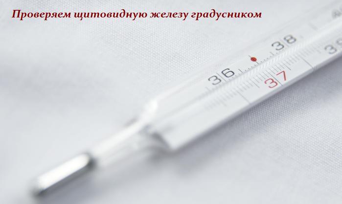 2749438_Proveryaem_shitovidnyu_jelezy_gradysnikom (700x417, 297Kb)