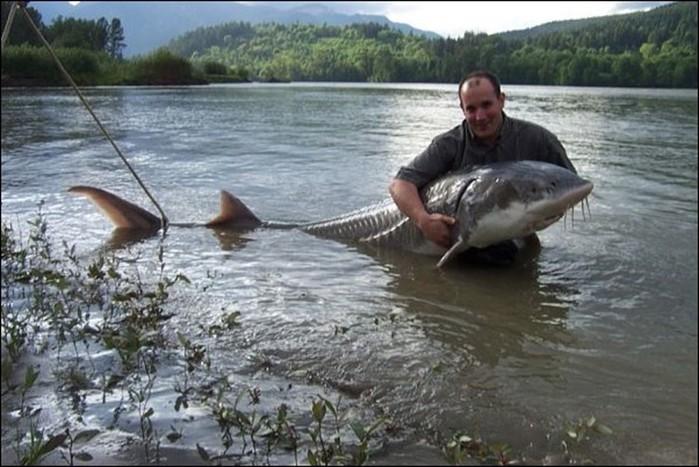 отчет о рыбалке волга городня