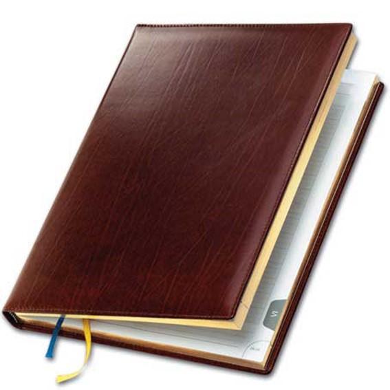 Личный дневник в компьютере   запросто! Программы для ведения дневников на компьютере