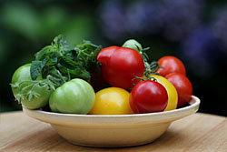 5300761_ispolzyite_krasnie_pomidori (250x167, 11Kb)