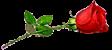 116275907_1410009732_Bez_imeniuu__kopiya (112x50, 6Kb)