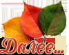 5230261_dalee_list (100x80, 18Kb)