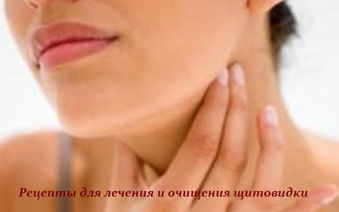 2749438_Recepti_dlya_lecheniya_i_ochisheniya_shitovidki (700x437, 243Kb)