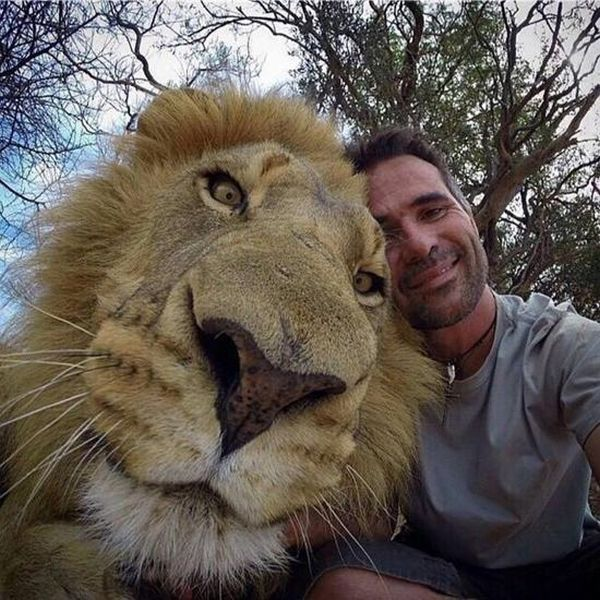 1422574958_animals_selfie_03 (600x600, 91Kb)