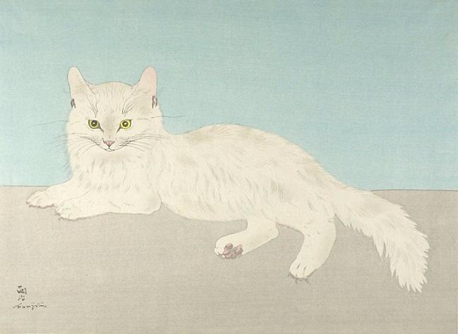 White Cat (648x473, 177Kb)