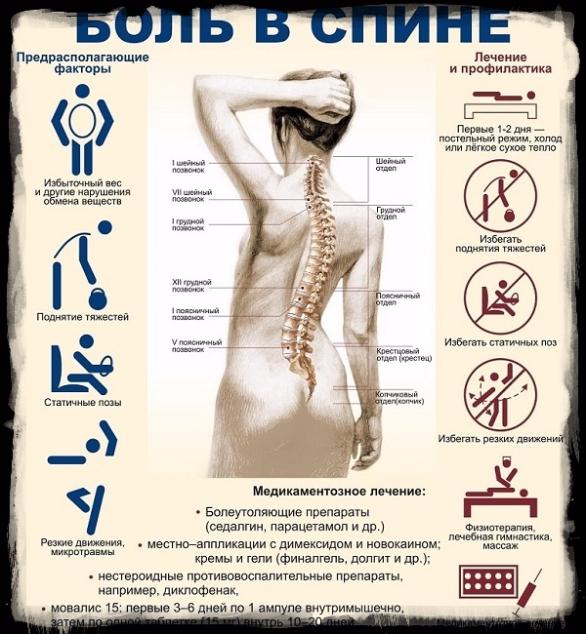 "alt=""Три самые эффективные растирки от боли в спине""/2835299_Tri_samie_effektivnie_rastirki_ot_boli_v_spine2 (586x634, 578Kb)"